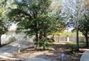2 Verbena Bend Place, Spring, TX 77382