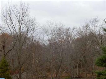 1075 Duck Creek Parkway Photo #6