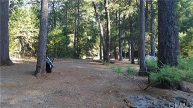5283 Deer Trail Photo #64