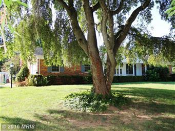 13719 Woodland Heights Drive Photo #29