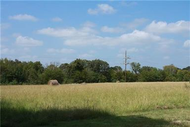 997 Vz County Road 1810 Photo #14