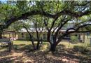 3600A MCGREGOR LN, Dripping Springs, TX 78620