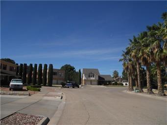 11508 Bobby Fuller Drive Photo #3