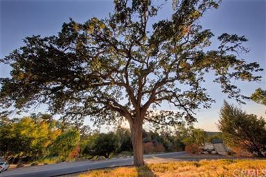 9575 Lake View Drive Photo #3