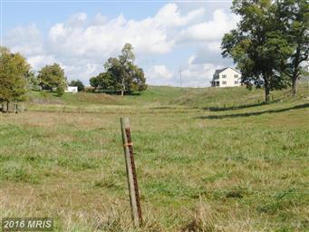 13732 Hollowell Church Road Photo #27