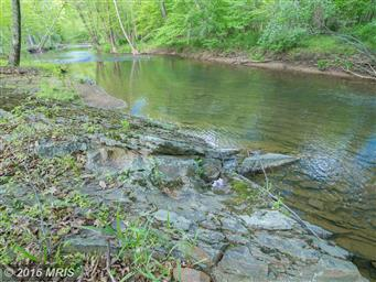 1389 Creek Road Photo #5