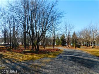 460 Lake Ridge Lane Photo #7