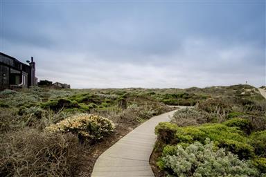 106 Monterey Dunes Way Photo #28