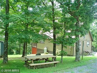 4388 Supinlick Ridge Road Photo #8