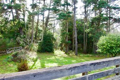 32651 Mill Creek Drive Photo #4