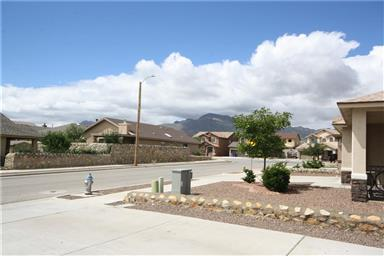 11037 Coyote Ranch Ln Photo #38