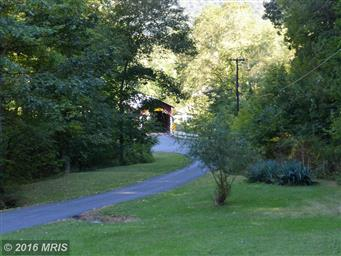 139 OLD FORBES TRAIL RD #ROAD Photo #11