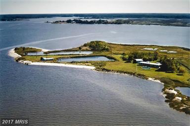 9050 Fishing Island Road Photo #29