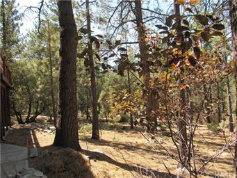 1509 Dogwood Ct Photo #8