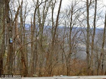 245 Prospect Peak Lane Photo #29