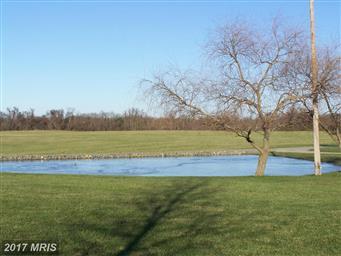 13744 Still Pond Road Photo #25