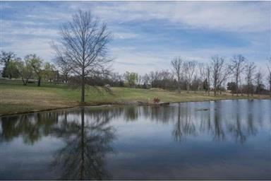 320 W CAMPING AREA RD #LOT 1 Photo #11