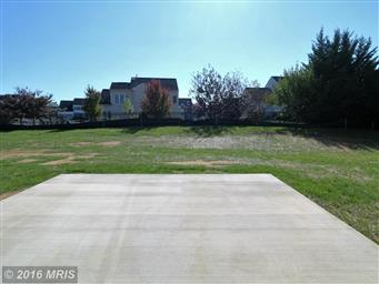19111 Red Maple Dr Photo #29