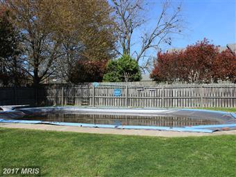 407 Edlon Park Drive Photo #6