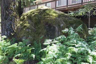 16201 Bottle Rock Road Photo #17