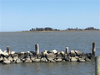 6313 George Island Landing Road Photo #9