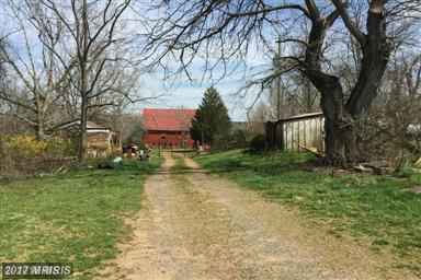 15199 Matthews Mill Road Photo #5