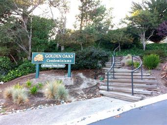 1109 Golden Oaks Lane #1109 Photo #7