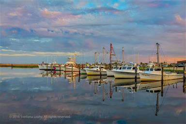 8407 Fishing Island Road Photo #35