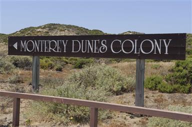 120 Monterey Dunes Way Photo #35