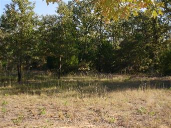 1020 Rs County Road 3210 Photo #25