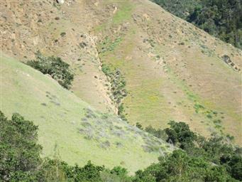 0 Santa Lucia Ranch Parcels B & C Highway 1 #ML81498942 Photo #30