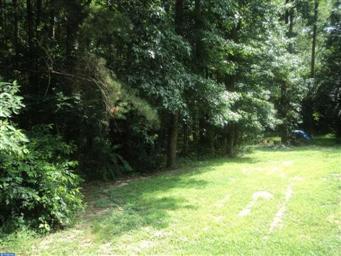 27673 Woodland Road Photo #25