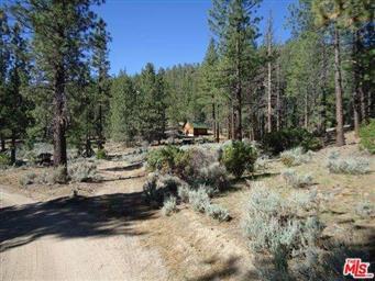1 Jawbone Canyon Road Photo #4