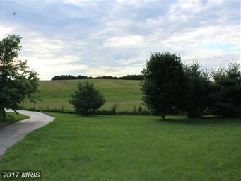 423 Heavenly Acres Ridge Road Photo #29