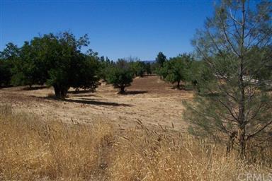2655 Mediros Lane Photo #42