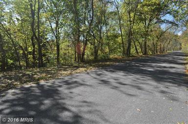 323 Millner Road Photo #29