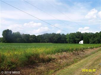 5608 Daniels Choice Road Photo #3