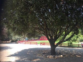 44725 Reliz Canyon Road Photo #41