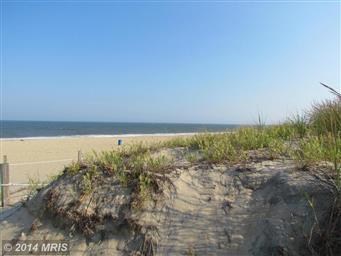5405 Coastal Highway #409 Photo #30