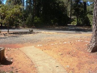 5912 Pentz Road Photo #6