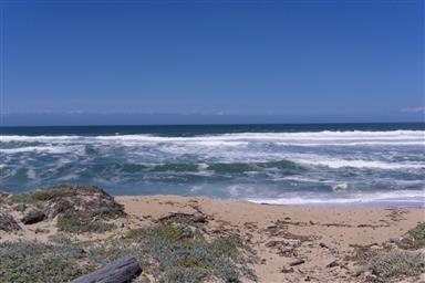 236 Monterey Dunes Way Photo #17