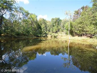 786 Bowman Hollow Road Photo #11