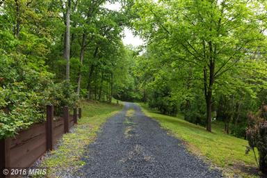 541 Forest Road Photo #28