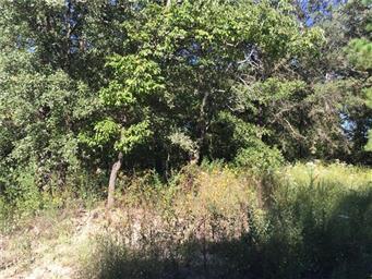 17010 Creekside Drive Photo #30