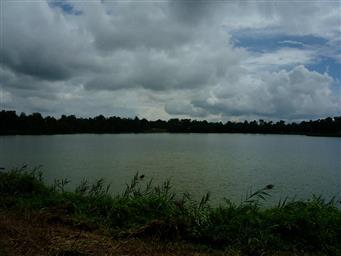 1606 E TAYLOR LAKE CIR #CIRCLE Photo #4