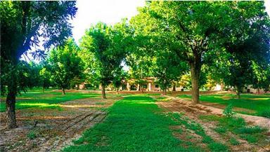 15820 Socorro Road Photo #8