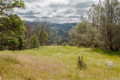 3979 Oak Grove Road Photo #25