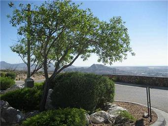 394 ROCKY POINT DR Photo #15