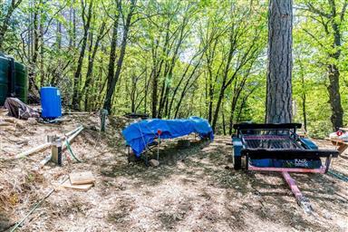 10643 Rosa Trail Photo #19