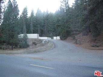 3381 Wildwood Road Photo #6